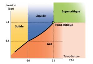 Huile de CBD extraite avec la méthode du CO2 supercritique
